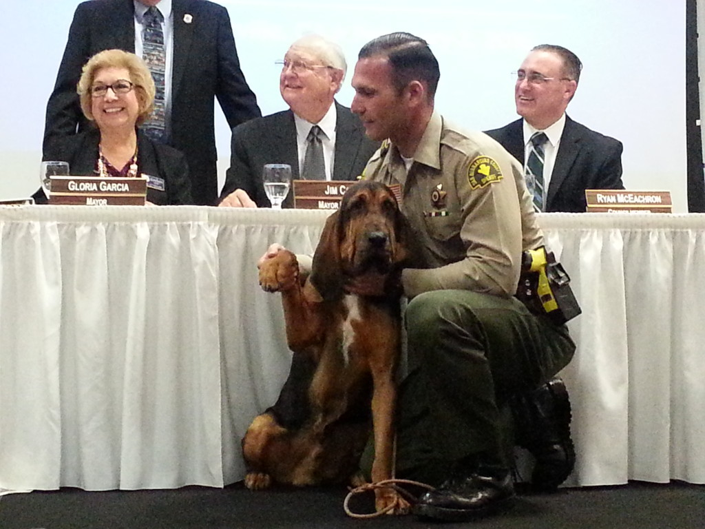 New K-9 Deputy Raider was officially sworn in as a San Bernardino County Sheriff's Deputy at the Victorville State of the City Address, Feb. 3.  Raider is joined by his handler, Deputy Antonio Higuera.  Raider and Higuera are proud members of the Victorville Police Department. Photo courtesy of Sue Jones, City of Victorville PIO