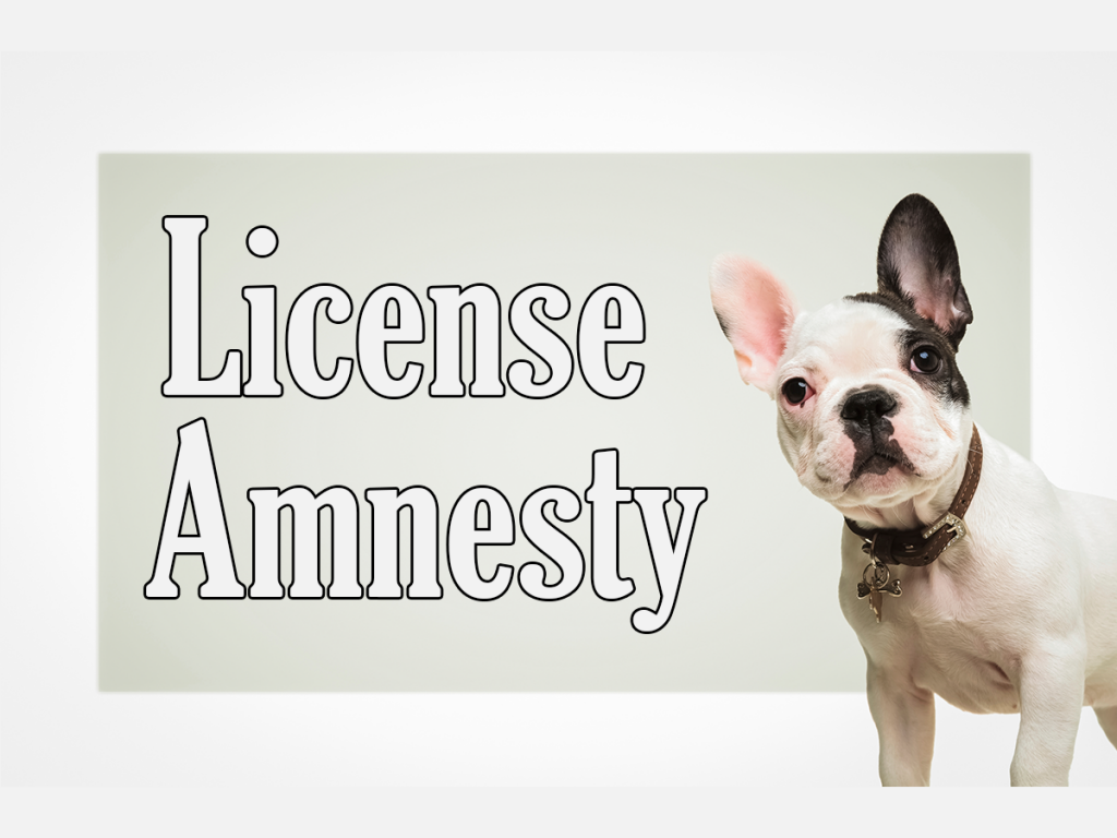 License-Amnesty-Social-Media-Ad-V1