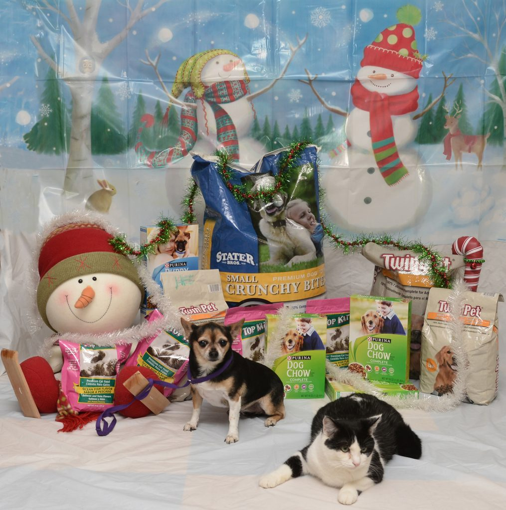 Tiny the dog and Sox the cat represent the many pets helped by the food drive.